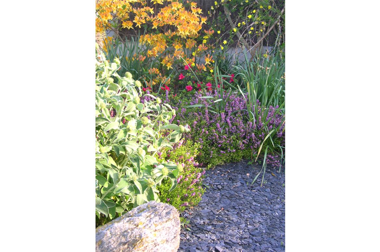 Entretien de jardin <br/> &#038; espaces verts