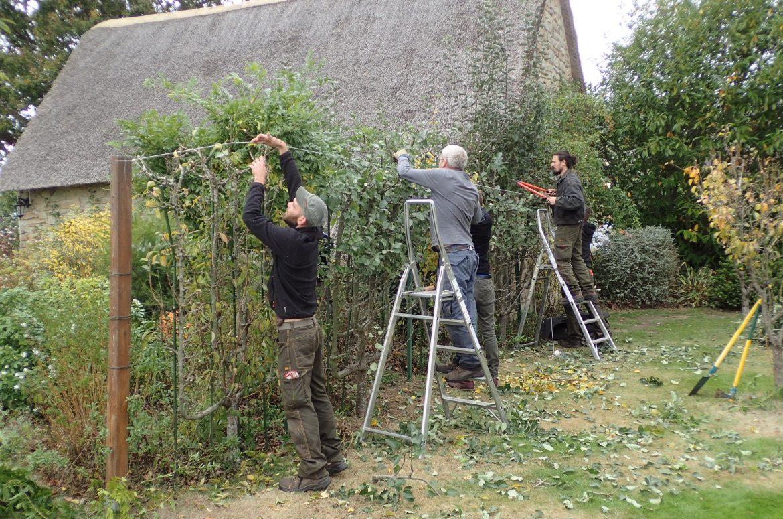 Entretien de jardin <br/> & espaces verts